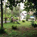 ジャカルタの土地価格、一番安い土地は?ランキング10